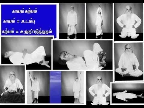 how to do kayakalpa yoga in tamil  yogawalls