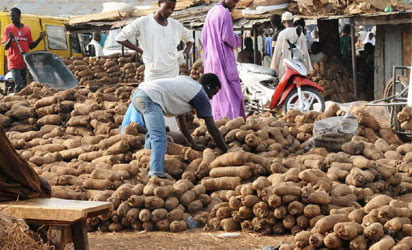 Image result for Nigerian man and yam