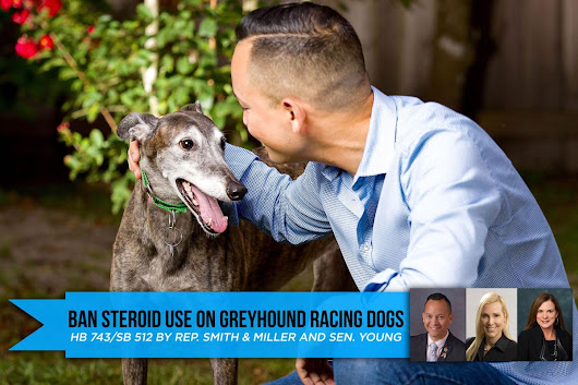 Smith Files Bipartisan Bill to Ban Steroid Use On Greyhound Racing Dogs