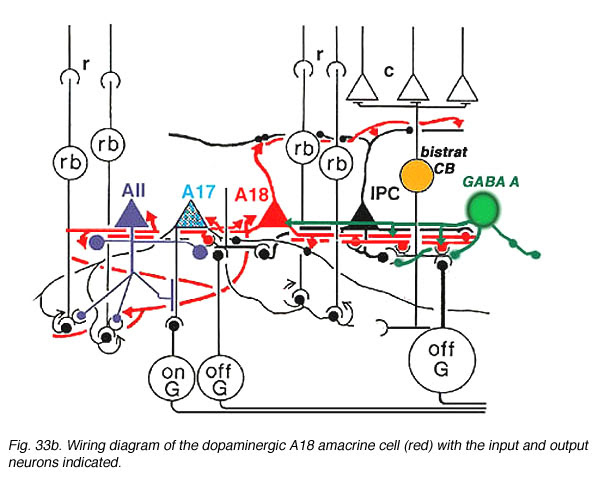 Meyers Plow Lights Wiring Diagram