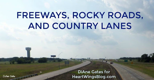 Freeways, Rocky Roads, and Country Lanes - HeartWings Blog