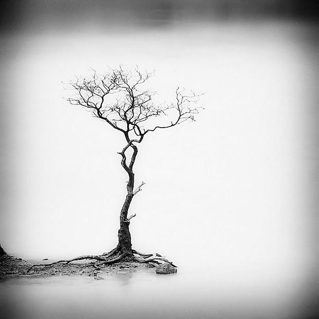 Hengki Koentjoro paisajes minimalistas 2