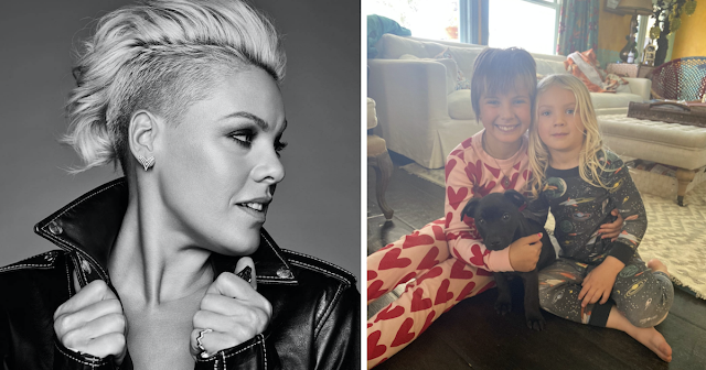 Pink Adopts A New Puppy And Gives Him The Longest Name Possible