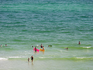 Panama City Beach, Florida. The greenness of t...
