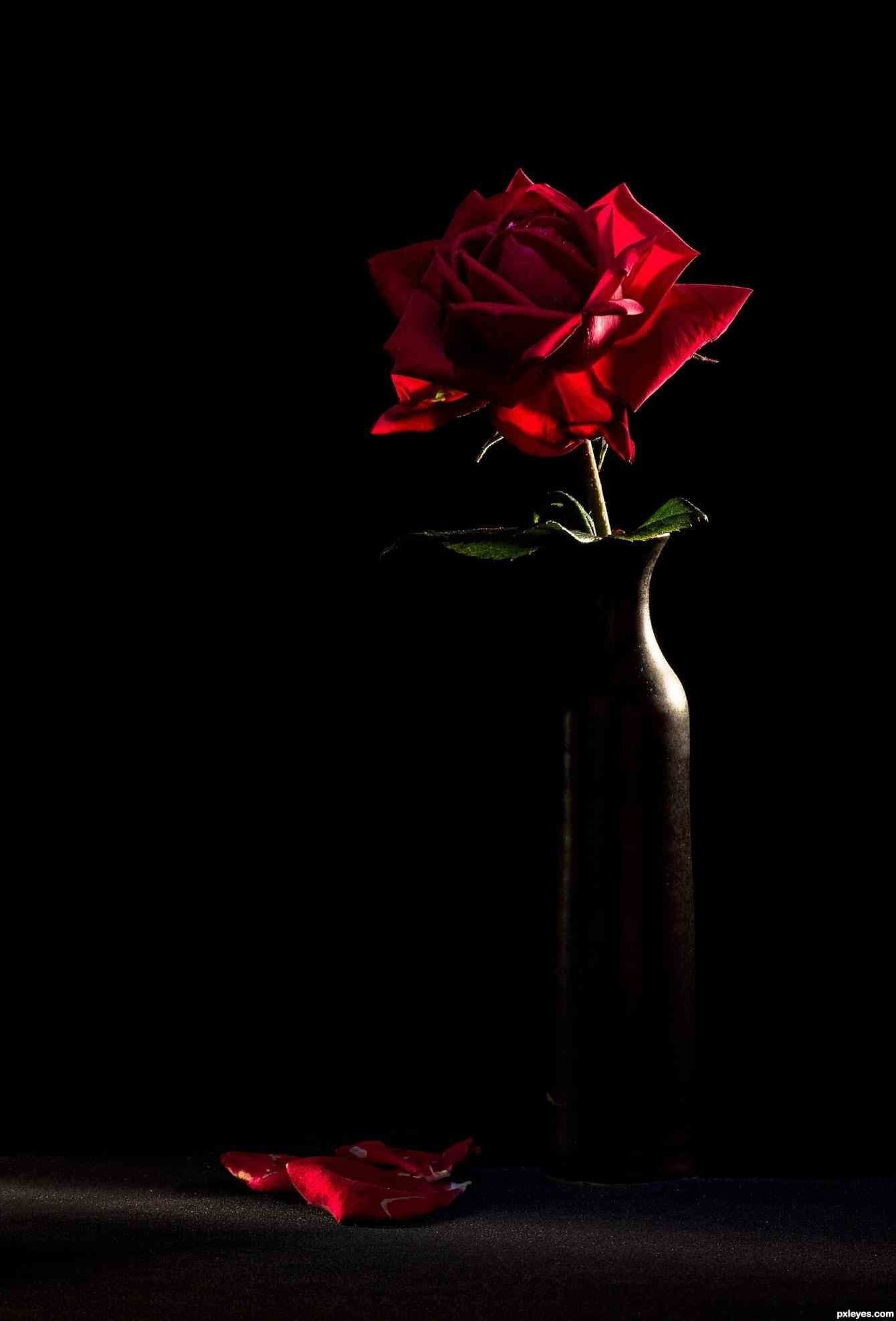 Iphone Lock Screen Red Rose Wallpaper Join now to share and explore tons of collections of awesome wallpapers. iphone lock screen red rose wallpaper