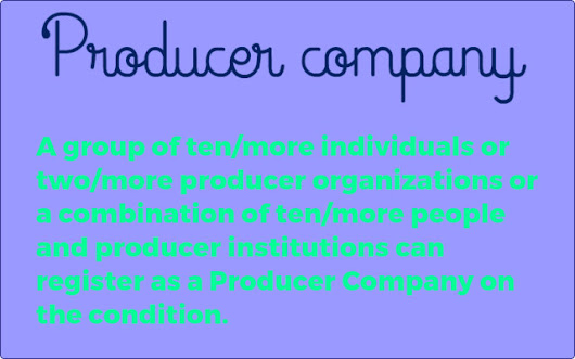 producer company - other metro - by Producer Company