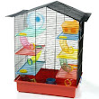 Hamster Club :: Housing - Cage Furnishings