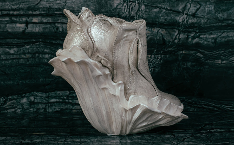 Fantasy Shoes by Anastasia Radevich