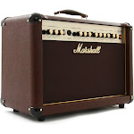 Marshall AS50D Acoustic Guitar Combo, 50W