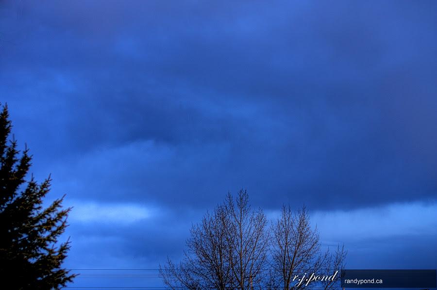 ~ 91/365 Blue ~