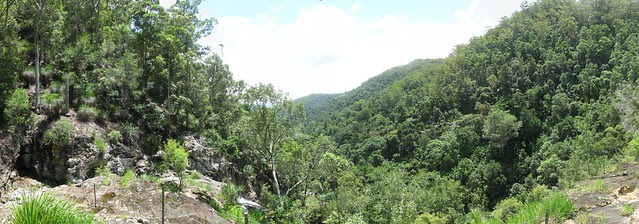 Kondalilla Falls Panorama