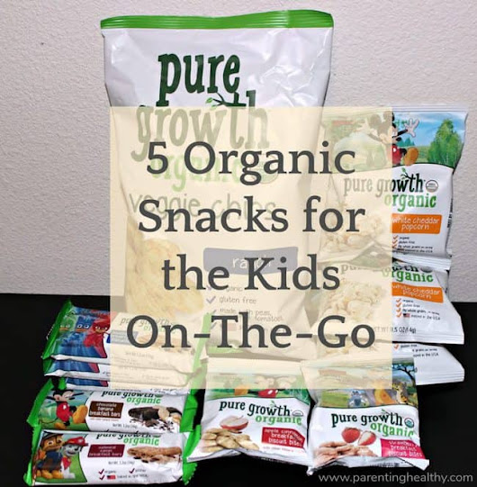 5 Organic Snacks for the Kids On-The-Go - Parenting Healthy