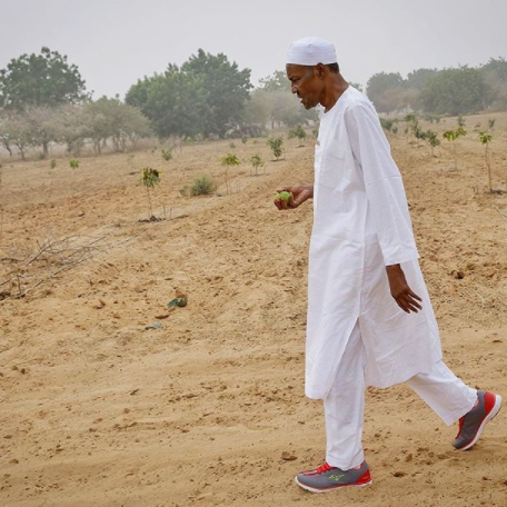 President Buhari inspect his farm in Katsina state as he rocks sneakers on traditional outfit