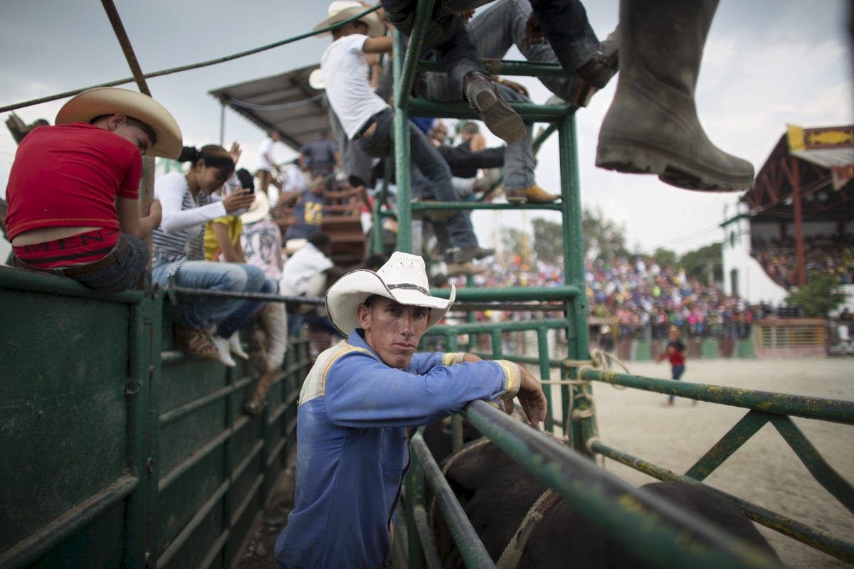 In March, all the cowboys of Cuba flock to Havana for the International Livestock Fair.