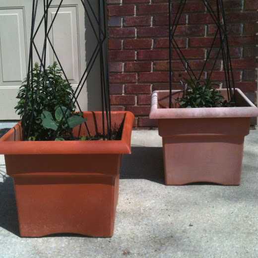 Can faded plastic pots be saved?