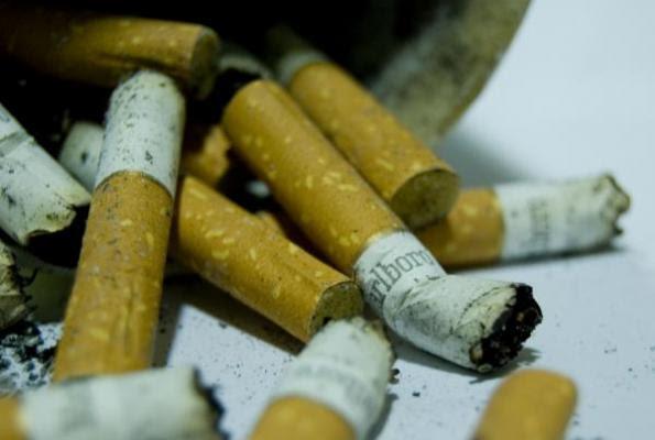 espantildea tabaquis