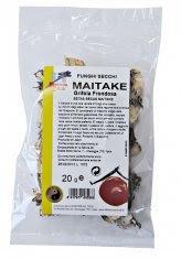 Maitake - Funghi Secchi - 20 gr