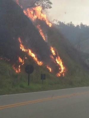 Fogo em mato às marges da rodovia (Foto: Wesley Cândido/Vanguarda Repórter)