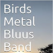 Birds Metal Bluus Band: The start of an epic journey (BMBB Book 1) - Kindle edition by Adriana Rigott, Sir Pen. Literature & Fiction Kindle eBooks @ Amazon.com.