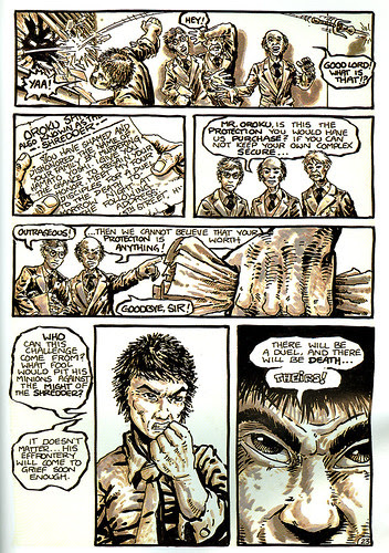 "Teenage Mutant Ninja Turtles V.1 #1 'Special Deluxe Edition' //Comic portion ..page 23.. // A message for Saki ..: ""THE SHREDER"" (( 1984 / 1992 ))"
