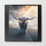 Highland Cattle Scotland Metal Art Print by Dod_mun - SMALL
