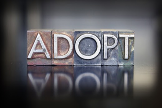 Helpful Information on Adoption in LGBT Families - Greenville Family Law - Attorney Robert Clark