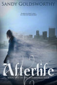 Title: Afterlife, Author: Sandy Goldsworthy