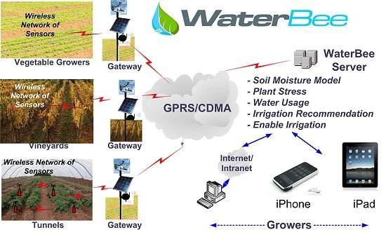 Sistema de irrigação inteligente economiza água e produz mais