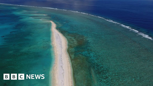 Ocean wilderness 'disappearing' globally - BBC News