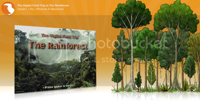 Digifrog Rainforest