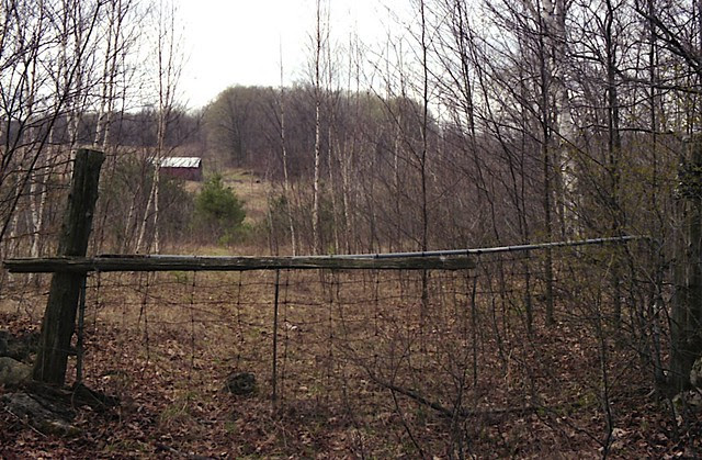 Abandoned Gate in the Middle of Mono Cliffs