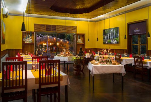 great place !!! - Review of Georges Rhumerie French Fusion Restaurant, Siem Reap, Cambodia - TripAdvisor