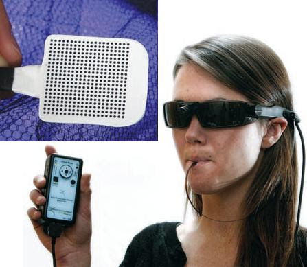 Dibujo20090927_LOLLIPOP_DEV ICE_electrode_array_stimulates_tongue_light_intensity_from_camera