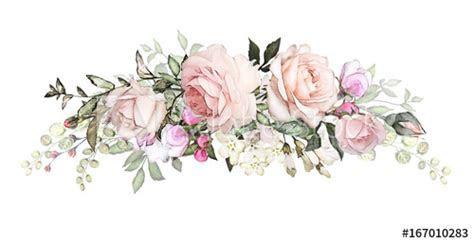 watercolor flowers arrangements. floral illustration