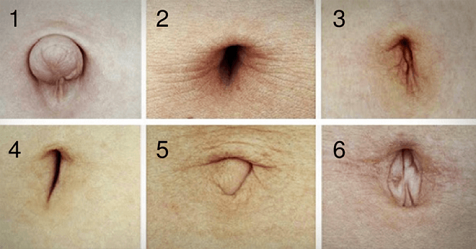 What Does The Shape Of Your Belly Button Say About You 11 Pics
