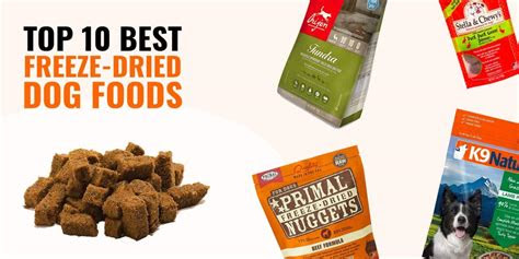 freeze dried dog foods reviews guide pros cons