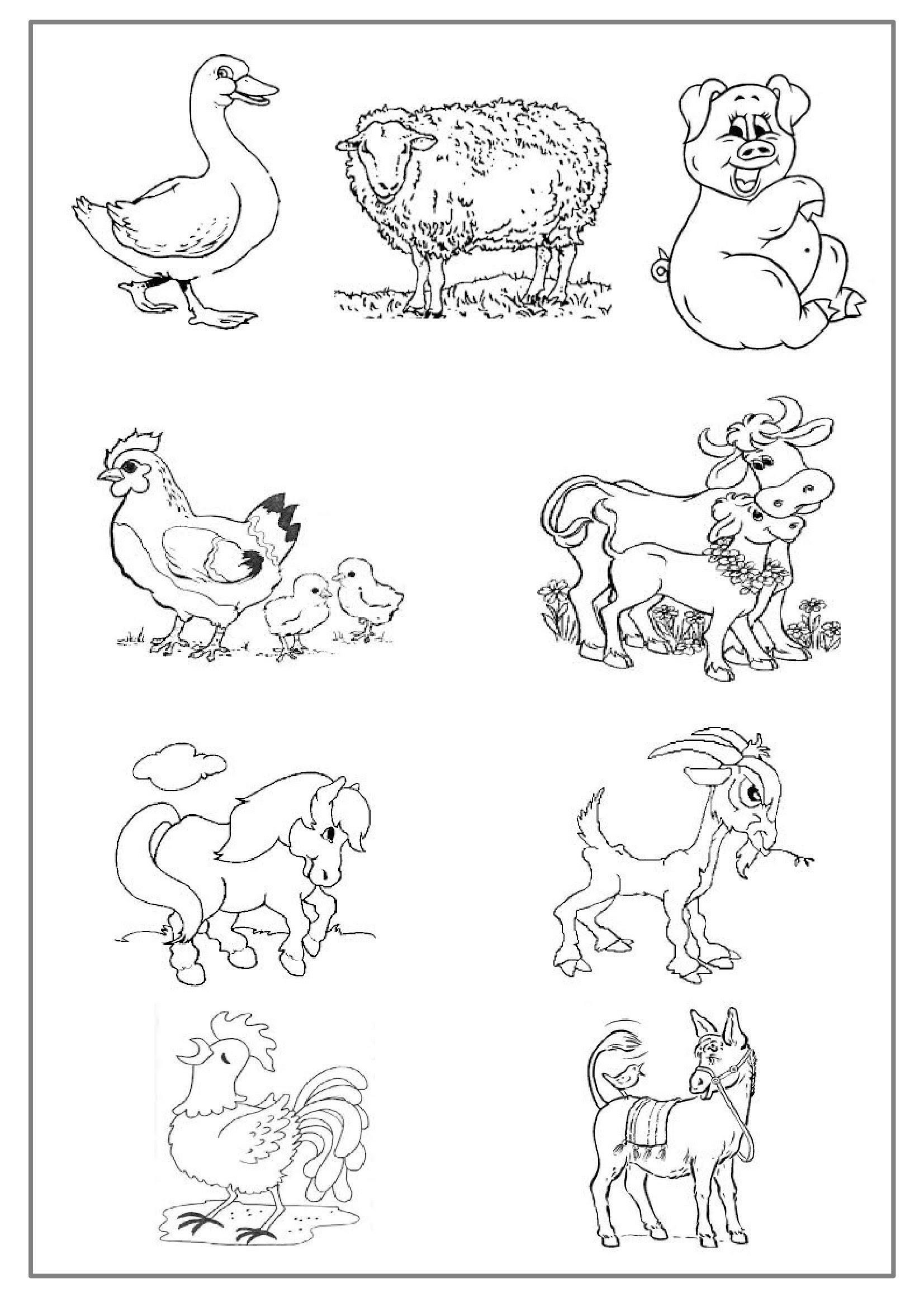 Coloriage Les Animaux De La Ferme Preprof
