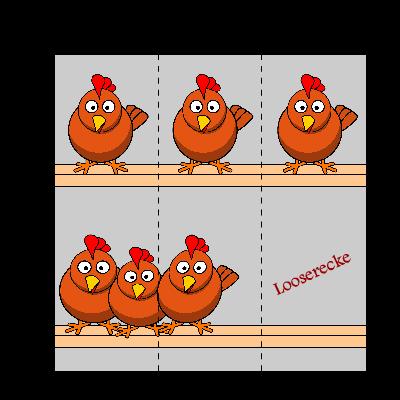 Platzbedarf von Hühnern - Heinis Hühner