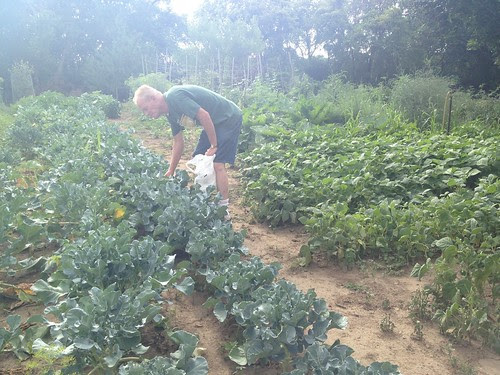 Dean in his garden!