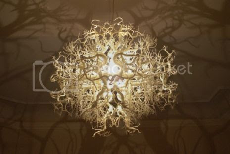 photo 06FormsInNatureOrganicChandelier_zps4b771368.jpg