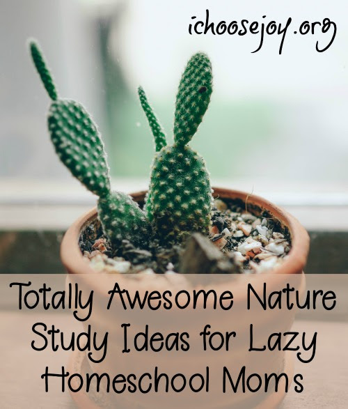 Totally Awesome Nature Study Ideas for Lazy Homeschool Moms - I Choose Joy!