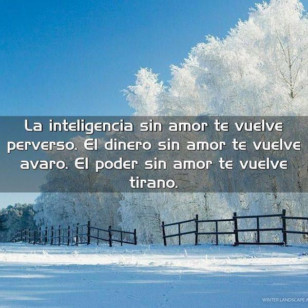 La Inteligencia Sin Amor Te Vuelve Frases Con Imagenes
