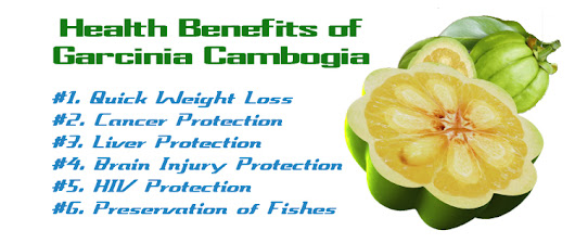 Benefits Gained from Garcinia Cambogia - Gud Health Tips