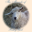 Goatlady and her Goats~BabyGirl's Story- Part One
