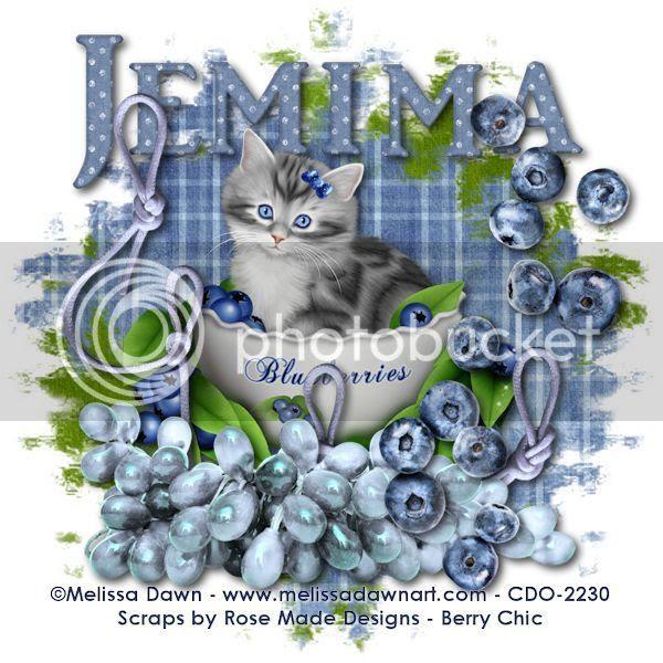 Blueberry - Jemima
