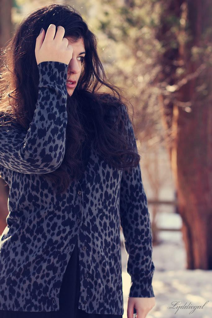 In leopard
