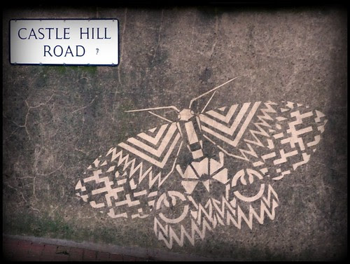 Hastings & St Leonards Moth Project