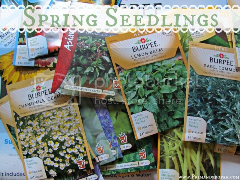 photo SeedPackets-1.jpg