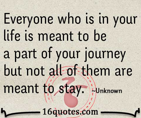Everyone Who Is In Your Life Is Meant To Be A Part Of Your Journey