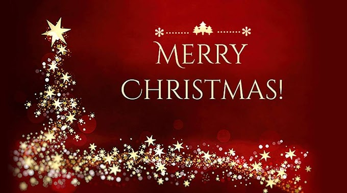 200+ Best Merry Christmas Wishes, Messages, And Quotes 2020 - Quotesforlife.in